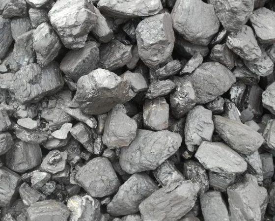 Węgiel Orzech Pośredni 24' – Luz